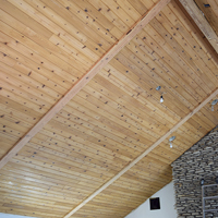 06 Wooden Ceiling