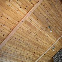 07 Wooden Ceiling