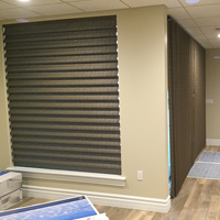 12 Windows Cloth Blinds